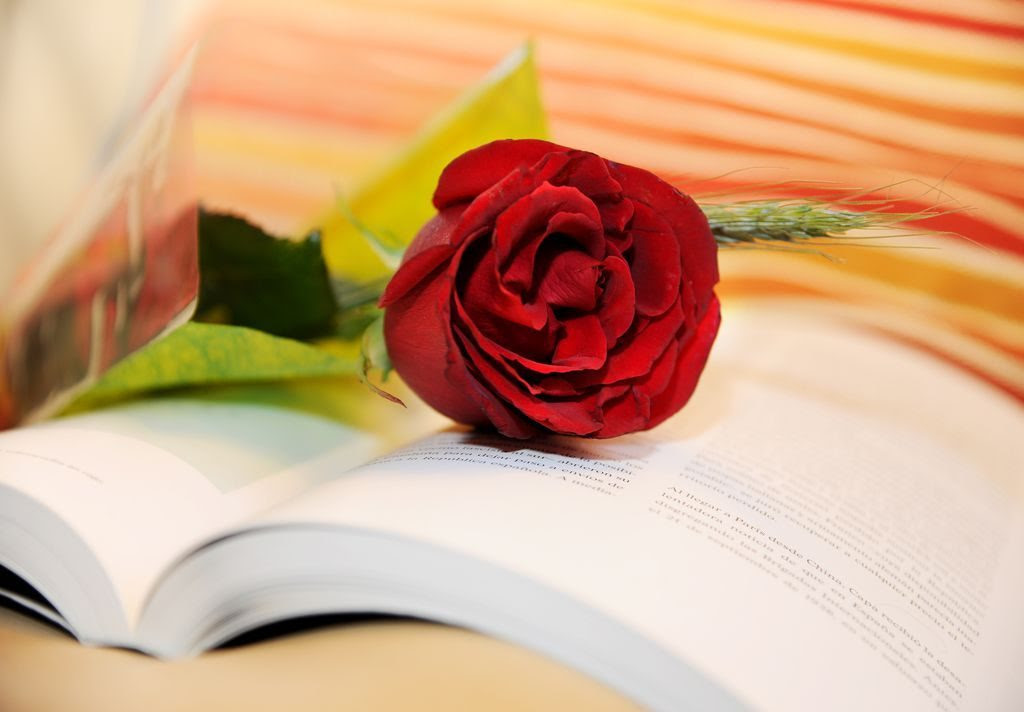 Resultado de imagen de rosas y libros sant jordi