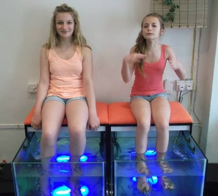 Alleviate Fish Spa Singapore Map,Map of Alleviate Fish Spa Singapore,Tourist Attractions in Singapore,Things to do in Singapore,Alleviate Fish Spa Singapore accommodation destinations attractions hotels map reviews photos pictures