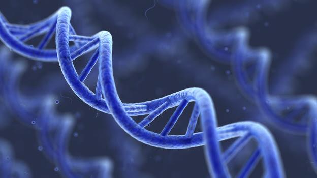 Artist's representation of DNA.