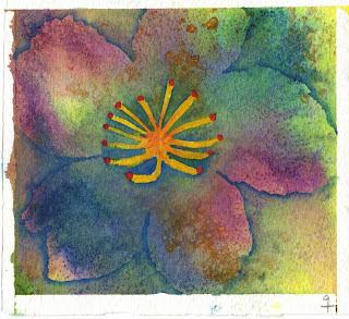 Una flor groga