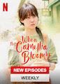 When the Camellia Blooms - Season 1