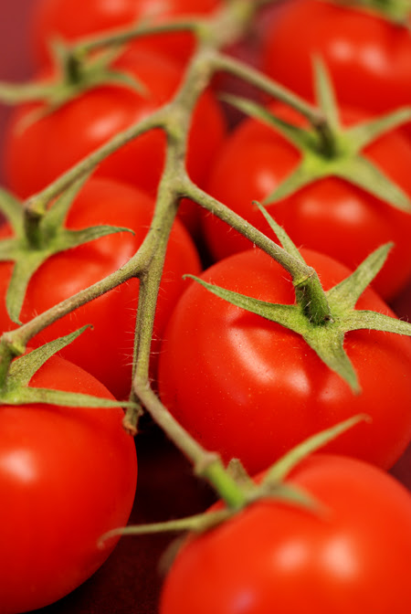 vine amorosa tomatoes© by Haalo