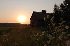 orland barn sunset