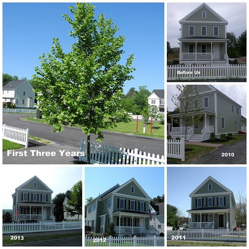 House Collage Three Years with Dates by midgefrazel