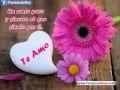 Frases Bonitas Y Romanticas De Amor