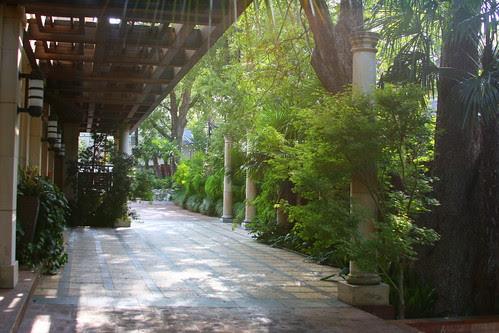 Wolford garden driveway