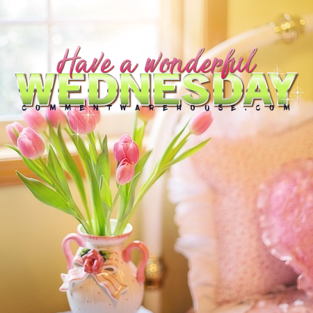 Have A Wonderful Wednesday Commentwarehouse Say It With A Pic