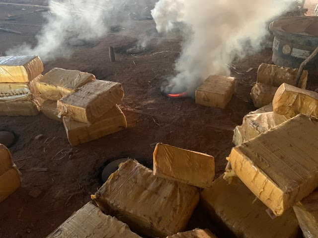 Polícia Civil de Feira de Santana incinera duas toneladas de drogas avaliadas em R$ 10 milhões