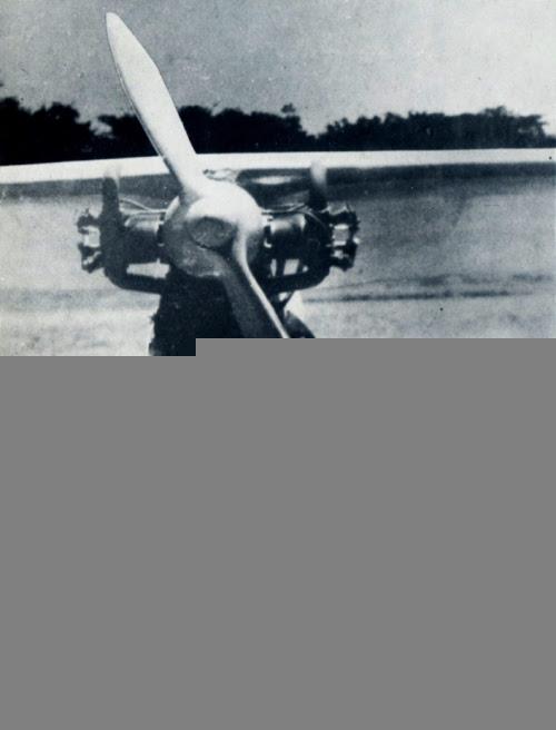 Gaston Chenu y Francisco Banchs junto a la avionioneta