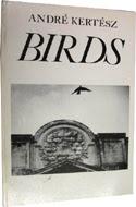 Birds by Andre Kertesz