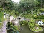 tropical Archives - Most Beautiful Gardens