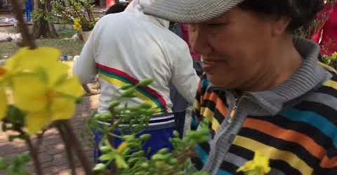 Trưa 12h 30 Tết nhiều người tranh thủ mua hoa