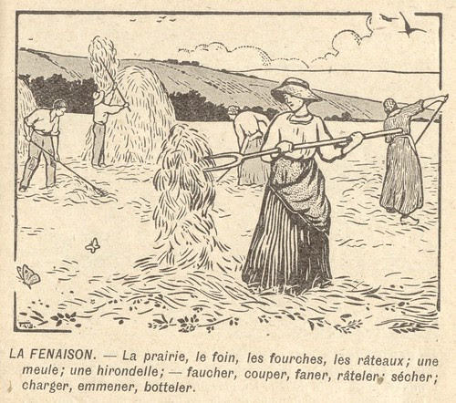 fenaison
