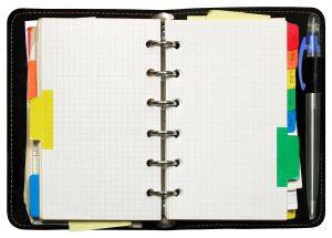 onlajn dnevnik
