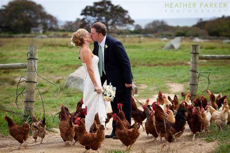 nantucket wedding photography   Boston Wedding