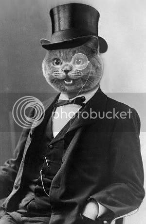 Monocle Cat