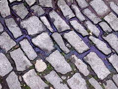 Purple by Teckelcar