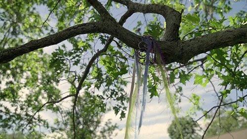 A tiara acaba em uma árvore, não muito diferente das vítimas rituais.