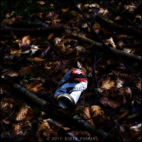 Myths of the New Forest: Detritus #28817