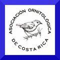 Ecosistemas De Costa Rica Bosque Tropical Seco