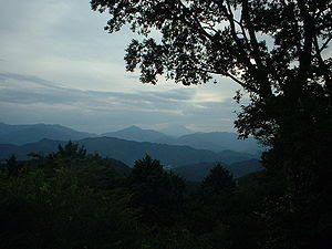 View from Mount Takao