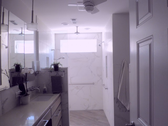 Shower door or just shower curtain? - Bathrooms Forum - GardenWeb