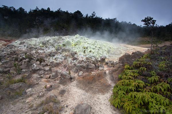 hawaii volcanoes national park sulphur banks
