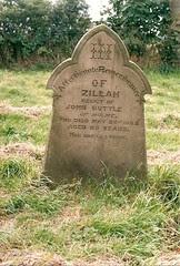 Zillah Johnson d1882