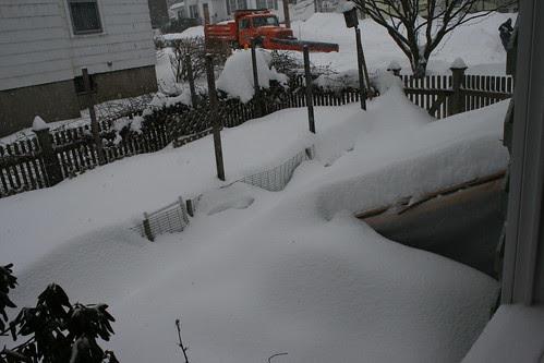 snow 087