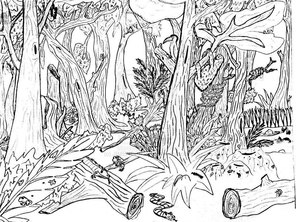 desenho_de_desmatamento_na_floresta_para_colorir_3