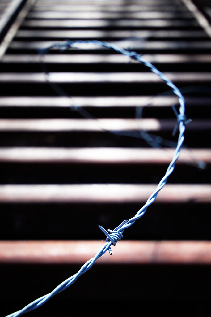 Barbed wire spiraling into the frame.