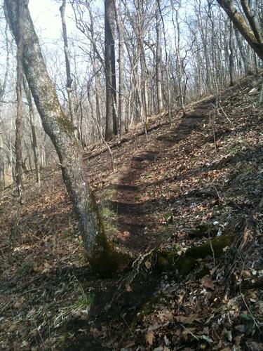 QQ trail