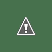 Certified Fresh