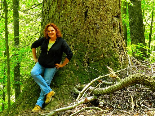 Me and The Big Tree