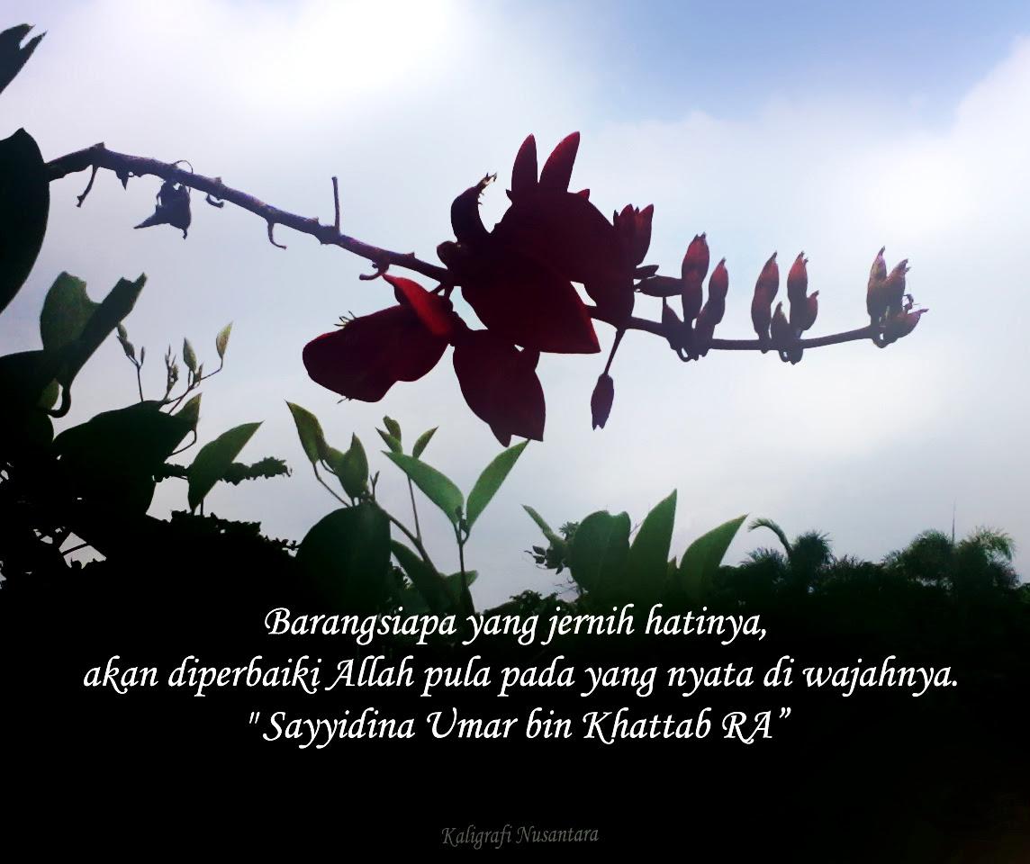 Motivasi Gambar Bunga Dan Kata Islami