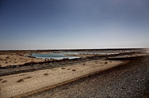 Only 15 years ago, Hamoun was the seventh largest wetland …