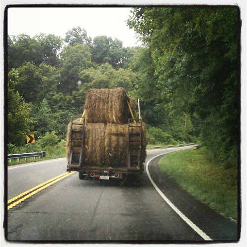 hay.there