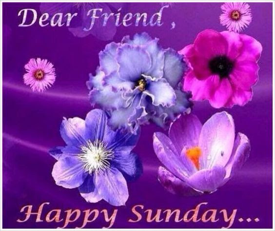 Dear Friend Happy Sunday Pictures Photos And Images For Facebook