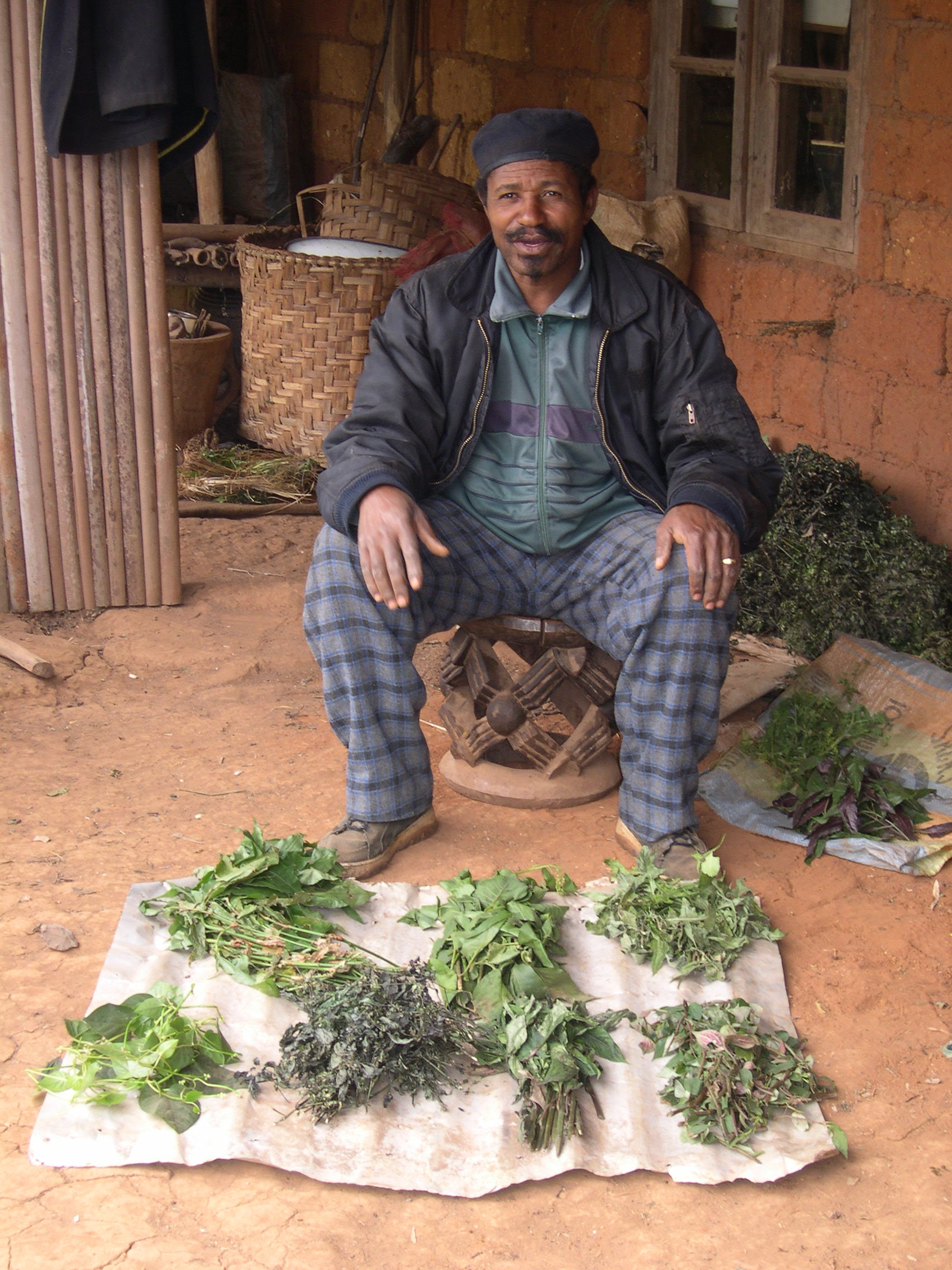 Traditional doctor, David Nchinda, is shown here with a fresh harvest of medicinal plants