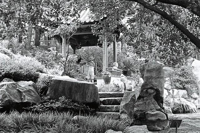 Chinese Garden 010