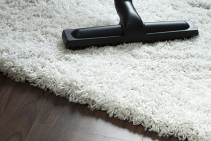 carpet cleaning santa monica