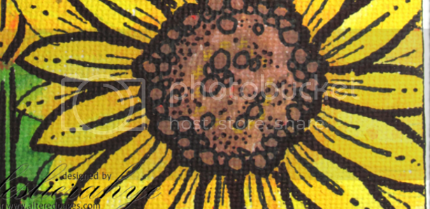 photo sunflower_zps8cf51dc8.png