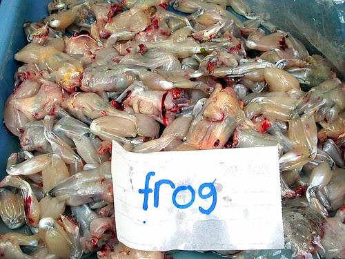 market frogs