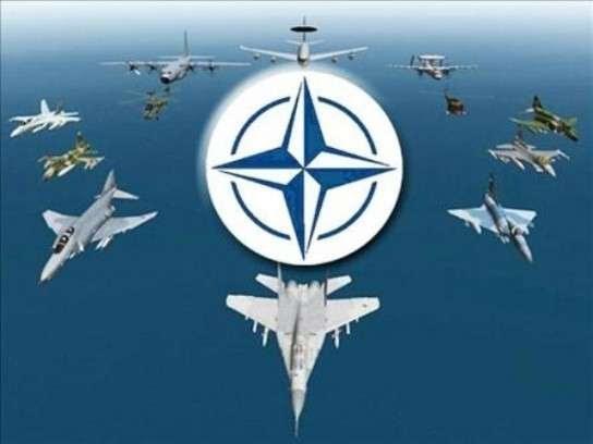 Бандитов из НАТО назвали инструментом войны с целью разграбления ресурсов других стран