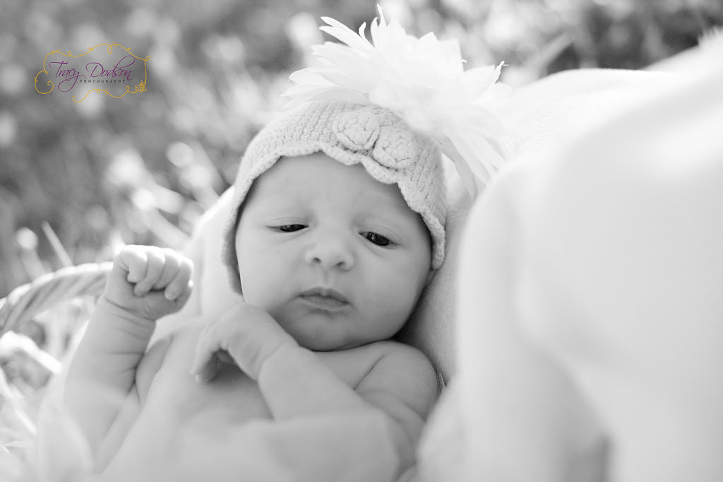 Newborns | Tracy Dodson Photography