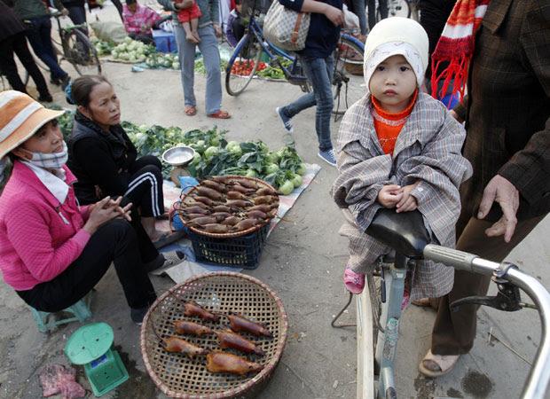 Mercado no Vietnã vende rato como comida