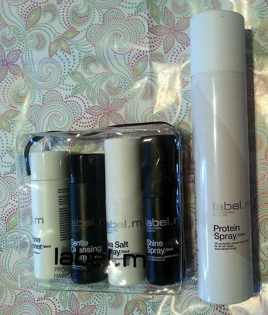 label M protein spray review haircare