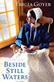 Beside Still Waters: A Big Sky Novel