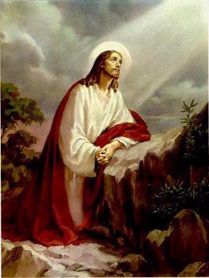 """11ª ENCONTRO: """"AGONIA DE JESUS NO HORTO DAS OLIVEIRAS"""""""