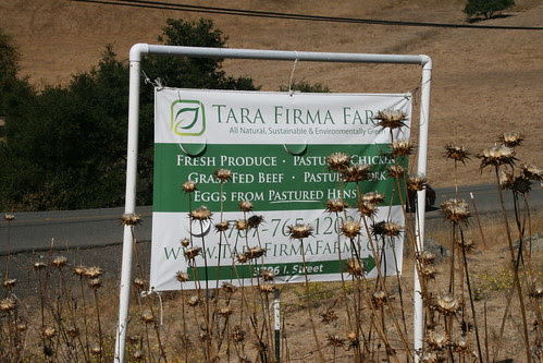 Tara Firma Farms Road SIgn